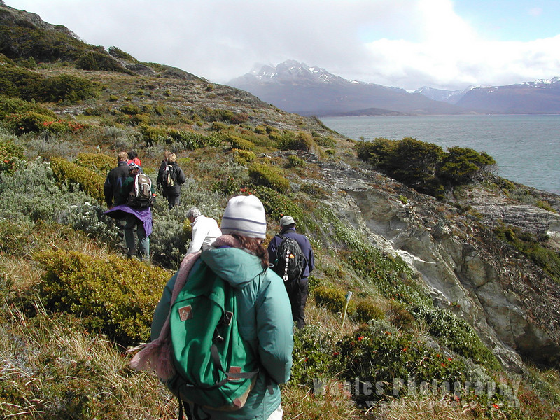 N3636 Hiking in Tierra del Fuego-2