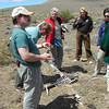 N3918 Willie's Discussion about Guanacos-55