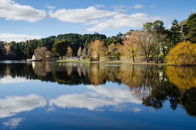Autumn Glory Lake Daylesford