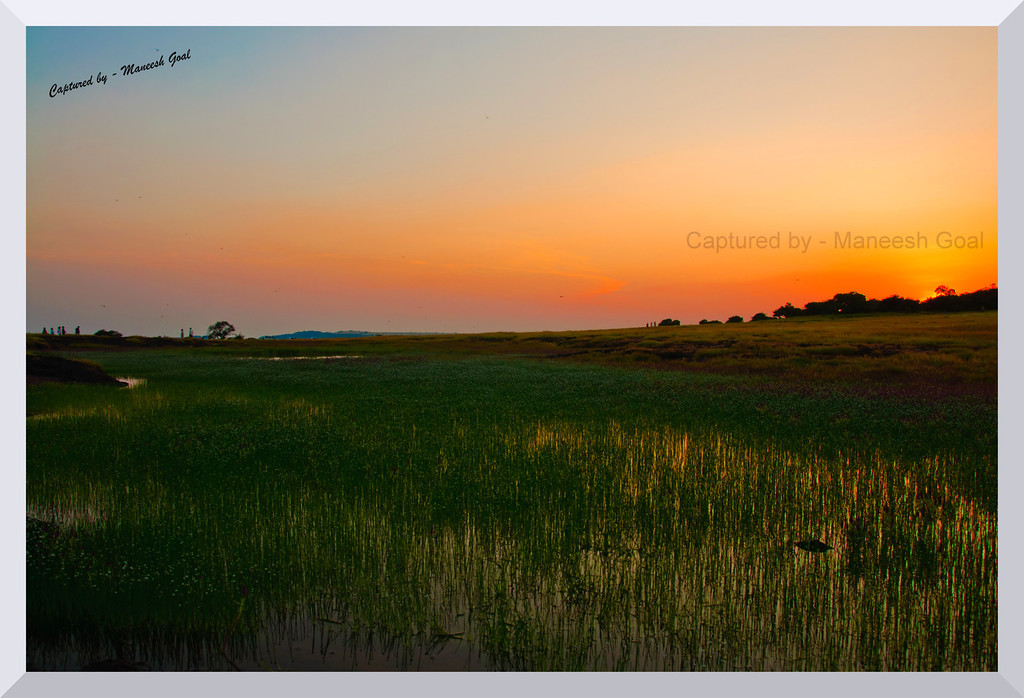 Kaas Plateau at sunset time!