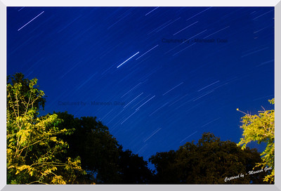 Star trails over the Kumbhalgarh Wildlife Sanctuary, Rajasthan  30 minutes' single exposure shot