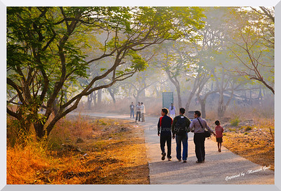 Morning is when the wick is lit. A flame ignited, the day delighted with heat and light, we start the fight for something more than before. - Jeb Dickerson  Morning walkers inside the Sanjay Gandhi National Park