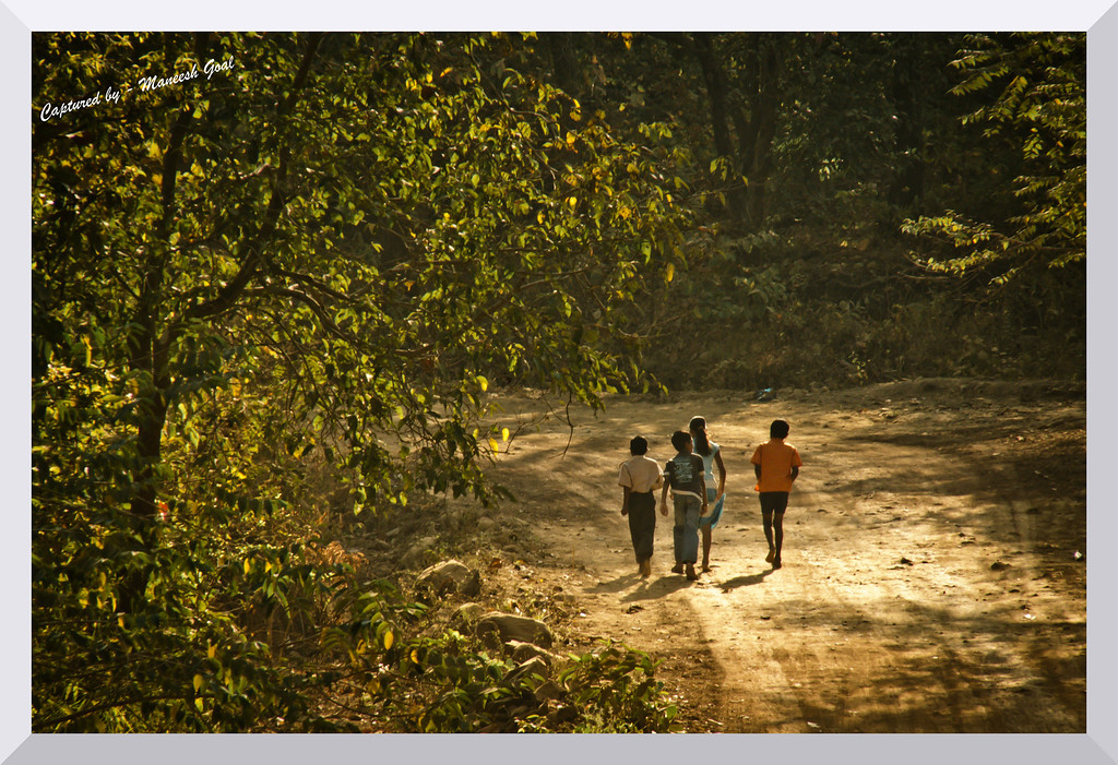 Sometimes we slow down to enjoy the sights of nature! Kids take it easy after running in the golden morning light
