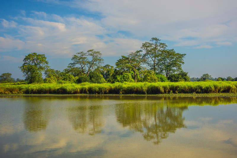 Along The Major Waterway Through The Park Kaziranga National Park, Assam, North-Eastern India