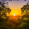 Sunset Makes it Last Moments Kaziranga National Park, Assam, North-Eastern India