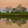 Reflections Along The River At Sunset Kaziranga National Park, Assam, North-Eastern India