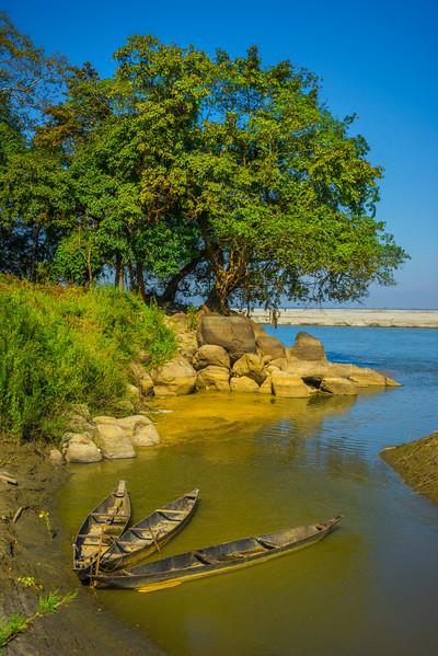 Along The Banks Are Three Canoes Kaziranga National Park, Assam, North-Eastern India