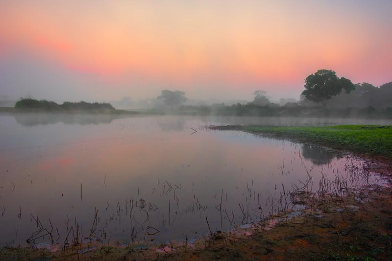 Mystery Morning Shoreline Along The River Kaziranga National Park, Assam, North-Eastern India