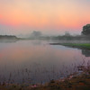 Mystery Morning Shoreline Along The River Kaziranga National Park, Assam, North-Eastern India