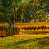 Historic Canoes Stationed Along The River Kaziranga National Park, Assam, North-Eastern India