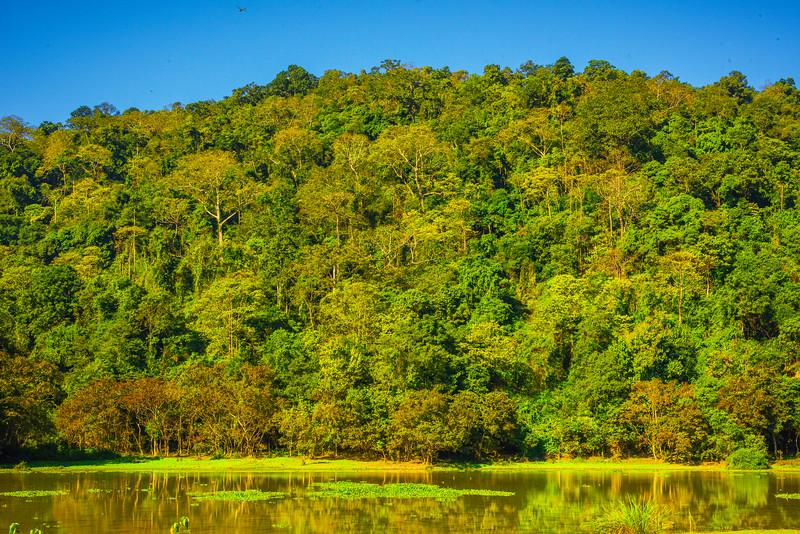 The Color Filled Hills In Kaziranga Park Kaziranga National Park, Assam, North-Eastern India
