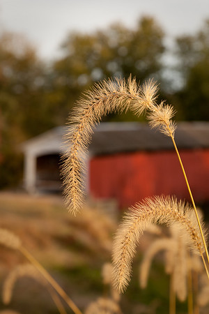 Indiana Scenery and Covered Bridges