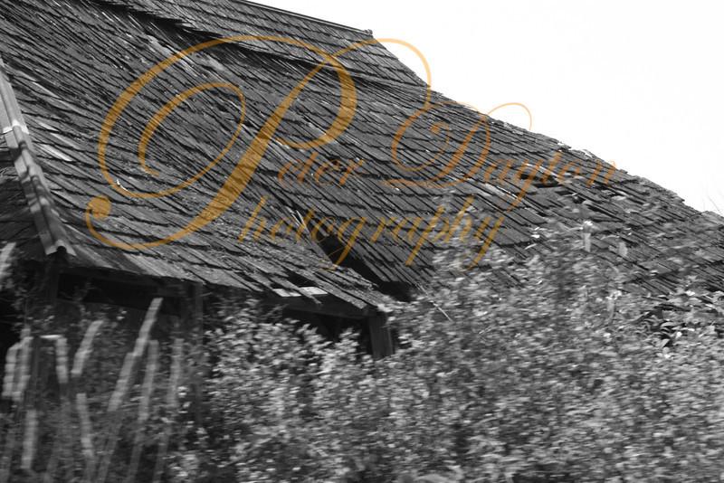 Derelict Building.