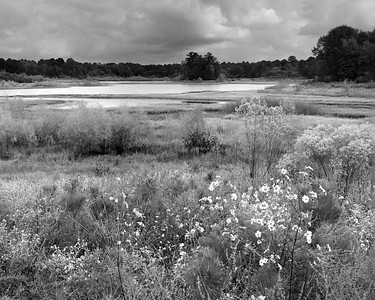 20201015-Spring Creeek Trail-35-Edit