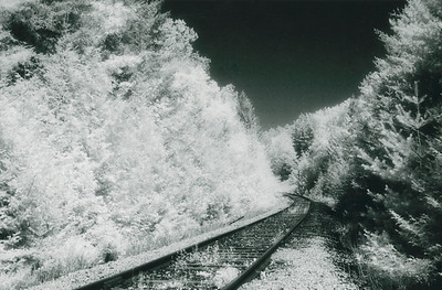 The Rails at Dave's Falls