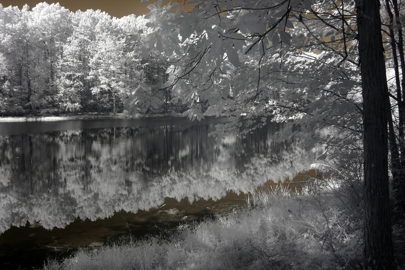 Two Pond Trail  PEEC