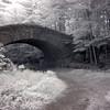 Bridge at Bubble Pond, Acadia
