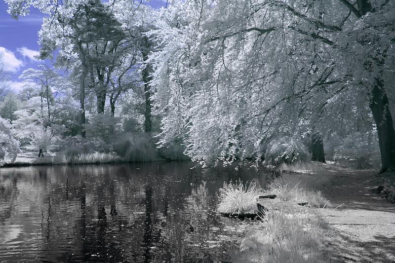 Exbury Gardens, Exbury Hampshire