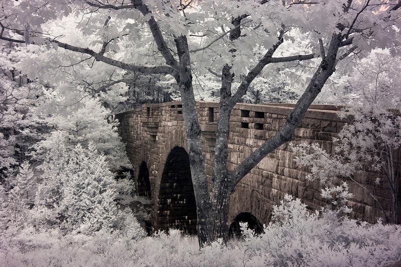 Duck Brook Bridge, Acadia