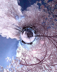 Goose Pond Planet Infrared