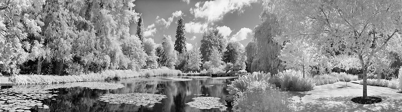 Water Gardens Pano