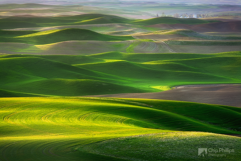 """Palouse Green""