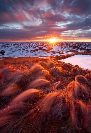 """""""Palouse Hills Winter Sunset""""  Blowing grasses, and snowy hills, seen during winter in the Palouse."""