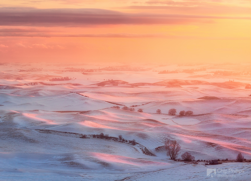"""Winter Glow Palouse"""
