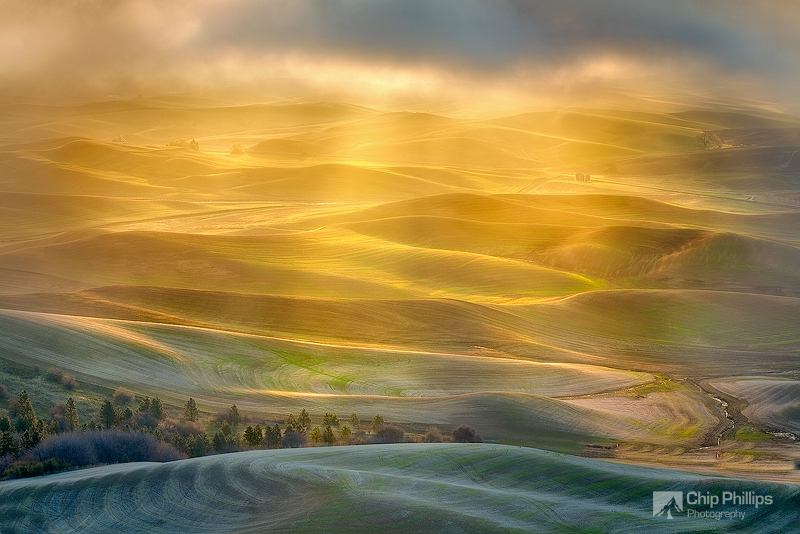 """""""Golden Light, Palouse""""  Sun rays though morning storm clouds over the Palouse in spring. Shot from Steptoe Butte, Palouse, eastern Washington State."""