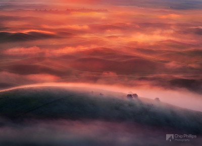 """Foggy Sunrise Palouse""  Both Zack Schnepf and I were leading workshops in the Palouse last spring, and we had the extreme pleasure of watching this fog roll in.   Shortly after this shot, the entire Palouse was shrouded in fog.   Quite a site to witness, and I'm pretty sure that was a once in a lifetime experience."