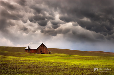 """Mammatus Clouds and Barn, Palouse""  Rare Mammatus storm clouds over a barn in the Palouse. Palouse region of Washington State"