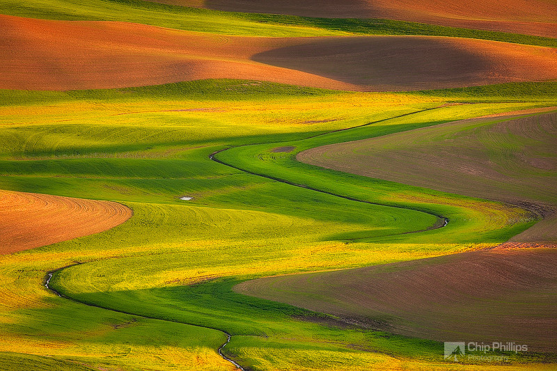 """""""Palouse Curves""""  A little river forms a perfect s-curve in the Palouse Hills."""