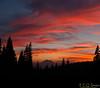DSC_3017 Panorama Crop