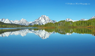 Springtime, Ox Bow Bend Grand Tetons NP