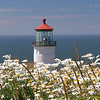 Cape Dissapointment Lighthouse, Washington State