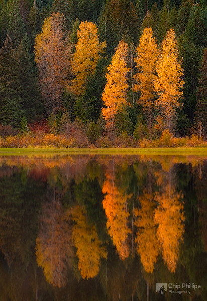 """Fall Reflections Trillium Lake"""