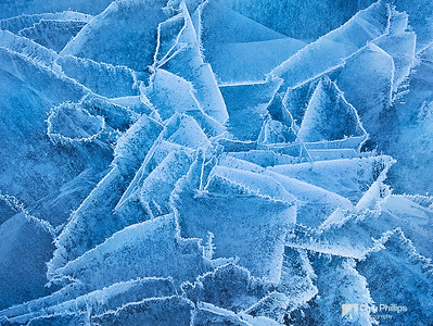 """Abraham Lake Ice Abstract #5""  These ice patterns kind of looked like deranged flowers.  Fascinating subject matter for photography! Kootenay Plains, Alberta"