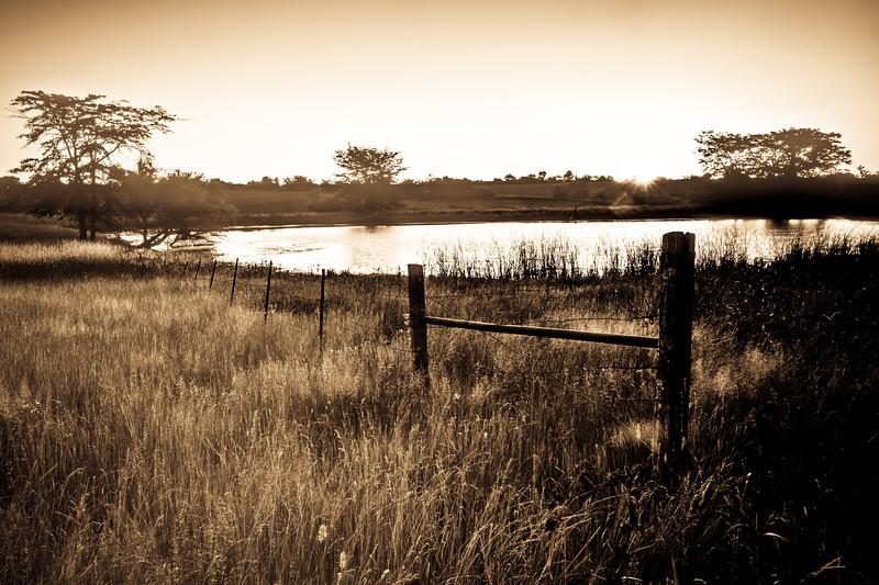 Surrounding farm pond