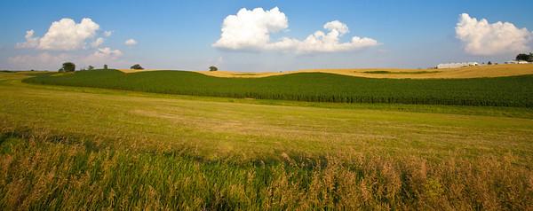 Farm Field  07 08 11  005 - Edit