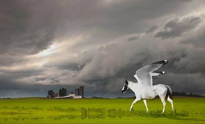Iowa Pegasus