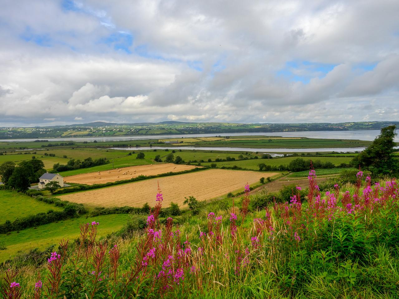 Farmland around Londonderry