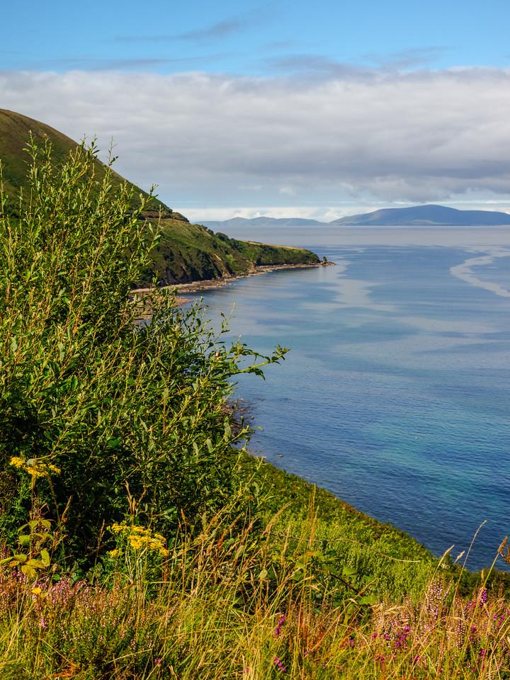 Coastline – Ring of Kerry