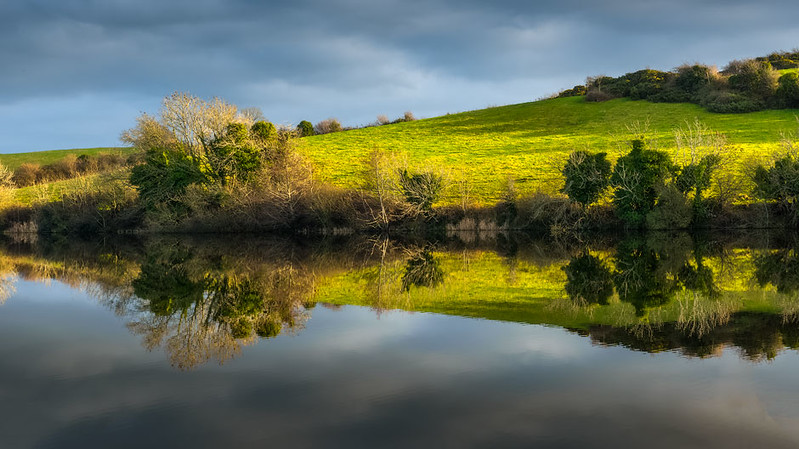 Loughinisland Reflection