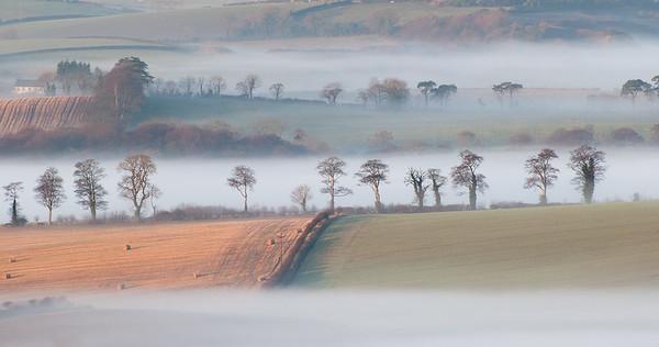Drumlins and mist