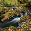 Shimna River