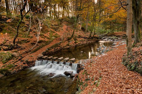 Stepping stones at the meeting of the waters, Tollymore Forest Park