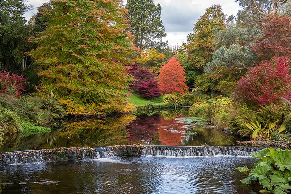 Mount Usher Gardens, Wicklow