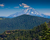 Iron Mountain, Iron Mountain Trail, Oregon - Mount Jefferson to the North