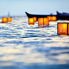 Floating Lanterns 2