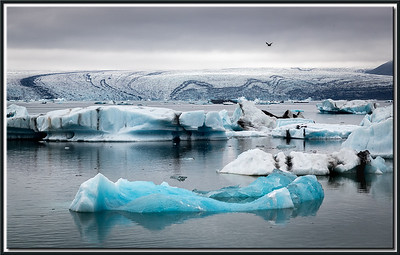 Iceberg and Glacier